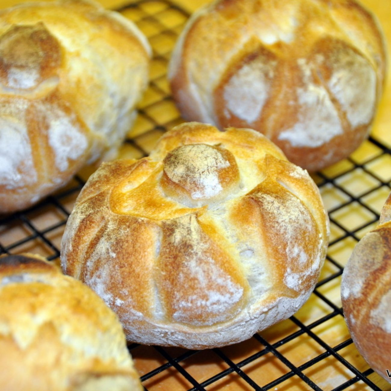 Video recipe for Rosetta bread rolls